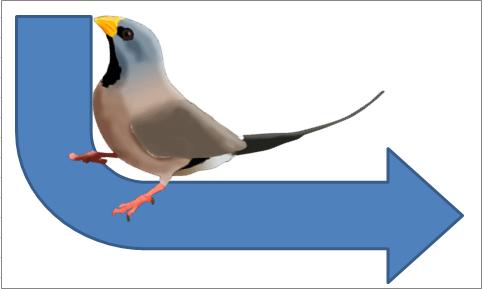 Long-tailed keyword bird on a Y-axis arrow.